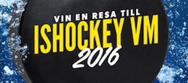 Rizk-hockey-raffle